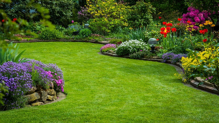 A tidy and healthy garden surrounded by flower beds
