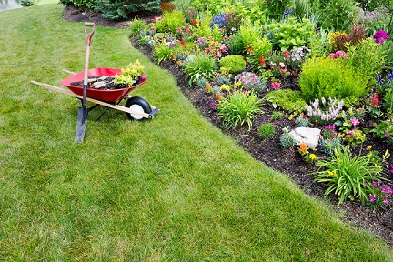 Residential gardening and landscaping